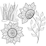 Vector Floral Collection of Hand Drawn Design Elements Royalty Free Stock Image