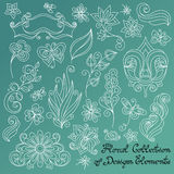 Vector Floral Collection of Hand Drawn Design Elements Stock Image