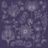Vector Floral Collection of Hand Drawn Design Elements Stock Photography