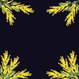 Vector floral corners. Floral decorations. Yellow flowers on dark background Royalty Free Stock Photography