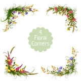 Vector floral corners on transparent background. Vector 4 floral corners on transparent background Royalty Free Stock Photography