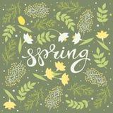 Vector floral de la tarjeta de la primavera ilustración del vector