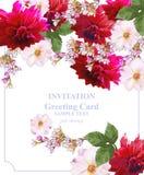 Vector floral de la tarjeta de la invitación Flores hermosas coloridas Colores fucsias y rojos Foto de archivo