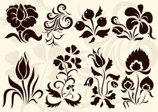 Vector floral decor Royalty Free Stock Photos