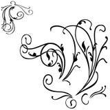 VECTOR FLORAL DECOR. Vector illustration floral grunge art design elements Stock Photography