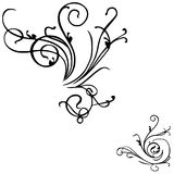 VECTOR FLORAL DECOR. Vector illustration floral grunge art design elements Stock Photos