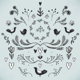 Vector floral decor set of hand drawn doodle dividers, borders, birds and flowers. Royalty Free Stock Images