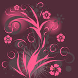 Vector floral design Royalty Free Stock Photo