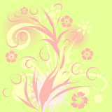 Vector floral design Royalty Free Stock Images