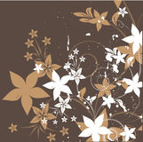 Vector floral design. Royalty Free Stock Images