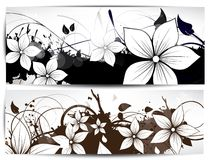 Vector floral design element Stock Image