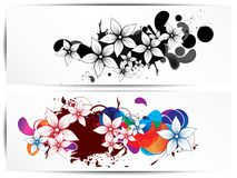 Vector floral design element Royalty Free Stock Images