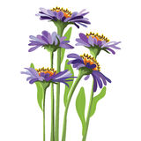 Vector floral design, purple aster Royalty Free Stock Photos