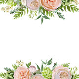 Vector floral design square card design. Soft pink peach english Stock Photography