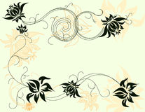 Vector floral elements Royalty Free Stock Photo