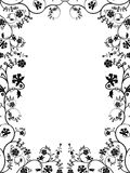Vector Floral Frame. Stock Photography