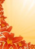 Vector floral frame Stock Images