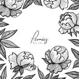 Vector floral frame with peonies. Detailed graphic flowers for your design small boxes, business cards, backgrounds and. Posts for social media, packaging Royalty Free Stock Photos