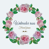 Vector floral frame with watercolor pink roses. Stock Photos