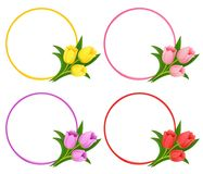 Vector floral frames with bouquets of tulips stock illustration