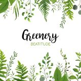 Vector floral greenery card design: Forest fern frond, Eucalyptu. S branch green leaves foliage herb greenery berry frame border. Wedding invite, poster Stock Photos