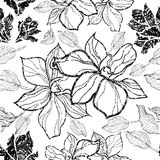 Vector floral grunge pattern Royalty Free Stock Images