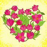 Vector Floral Heart With Magnolia Royalty Free Stock Photos
