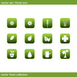 Vector floral icon collection. Vector collection of icons on the flora and ecology royalty free illustration