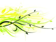 Vector floral illustration Stock Photography