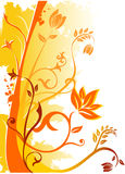 Vector floral illustration. Vector floral and plants illustration Stock Photography
