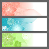 Vector floral illustration background. Horizontal Royalty Free Stock Images