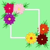 Vector floral illustration. Design for invitations, weddings, bi Stock Images
