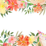 Vector floral illustration Royalty Free Stock Images