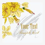 Vector Floral Invitation  Card Royalty Free Stock Image