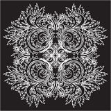 Vector floral lace Royalty Free Stock Images