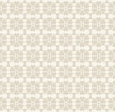 Vector Floral lace vintage rustic seamless pattern Stock Image