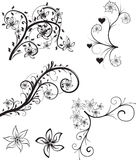 Vector floral ornament. The floral ornament set - vector Royalty Free Stock Photo