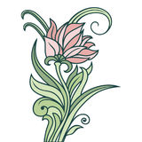 Vector floral ornament. Floral vector ornament. Flower and stems isolated on white background Royalty Free Stock Images