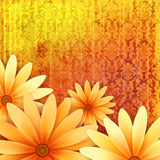 Vector floral ornate grunge background. With yellow daisy flowers at orange damask pattern stock illustration