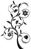 Vector floral  pattern. Vector floral  pattern isolated on white background Stock Photo