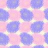 Vector floral pattern. Vector pastel seamless background with asters flower Stock Image