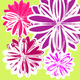 Vector floral pattern. In bright colors Royalty Free Stock Images