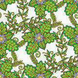 Vector floral pattern in doodle style with flowers and leaves. Royalty Free Stock Photos