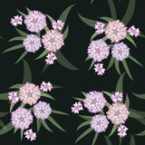 Vector floral pattern of a group of pink flowers with leaves. vector illustration