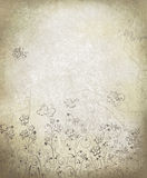 Vector floral pattern on grunge background. Stock Image