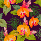 Vector floral pattern with orchids. Stock Image