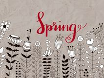 Vector Floral Pattern with Spring  Lettering Stock Image