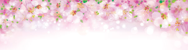 Vector floral pink bokeh banner. Royalty Free Stock Images