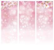 Vector floral pink bokeh banners. Vector blossoming sakura tree, pink bokeh banners Stock Images