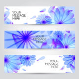 Vector floral and plant  banners set Stock Photography